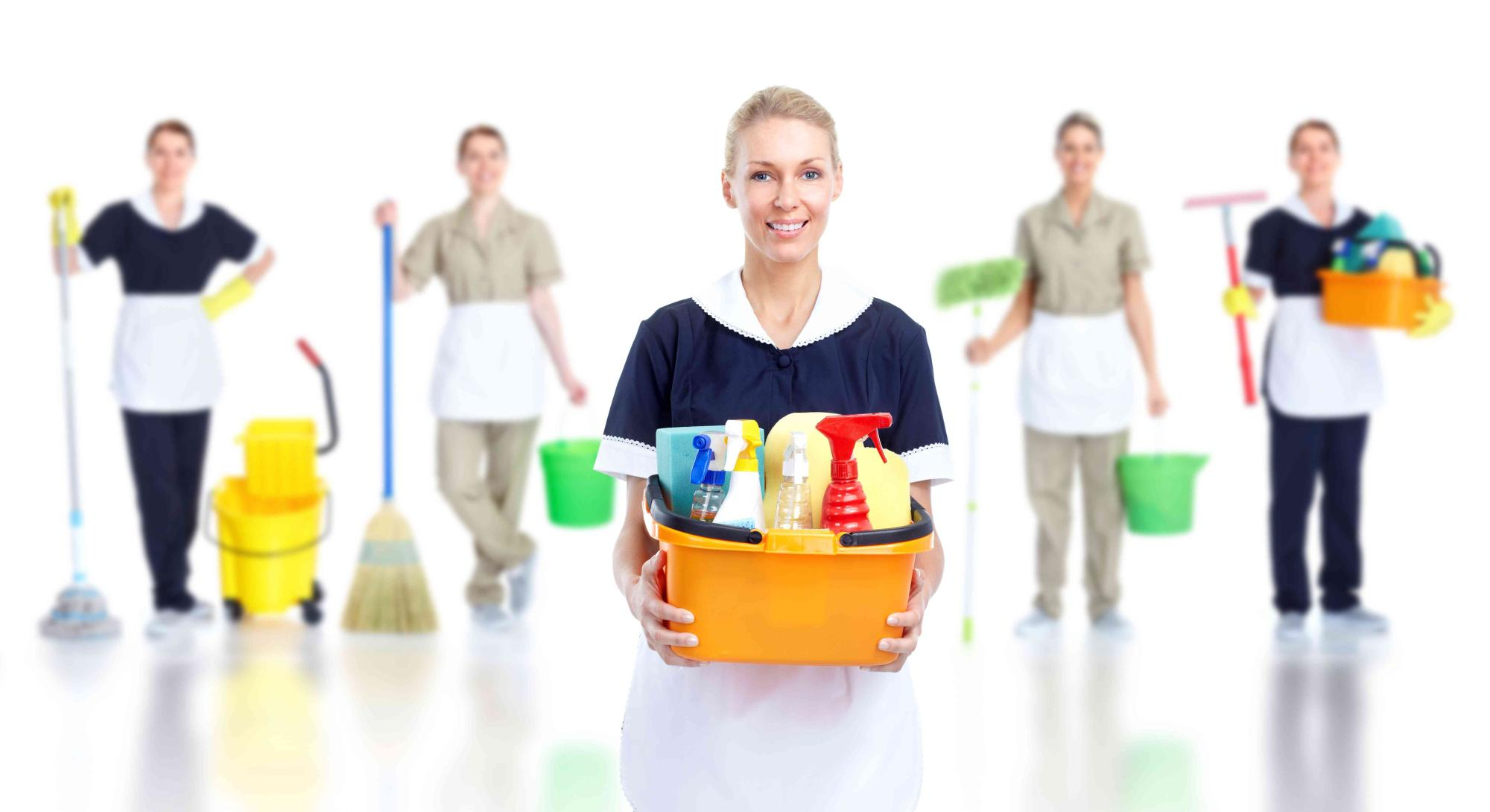 Professional Cleaning Services- Cleaning squad - 1